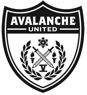 i am the avalanche 2011