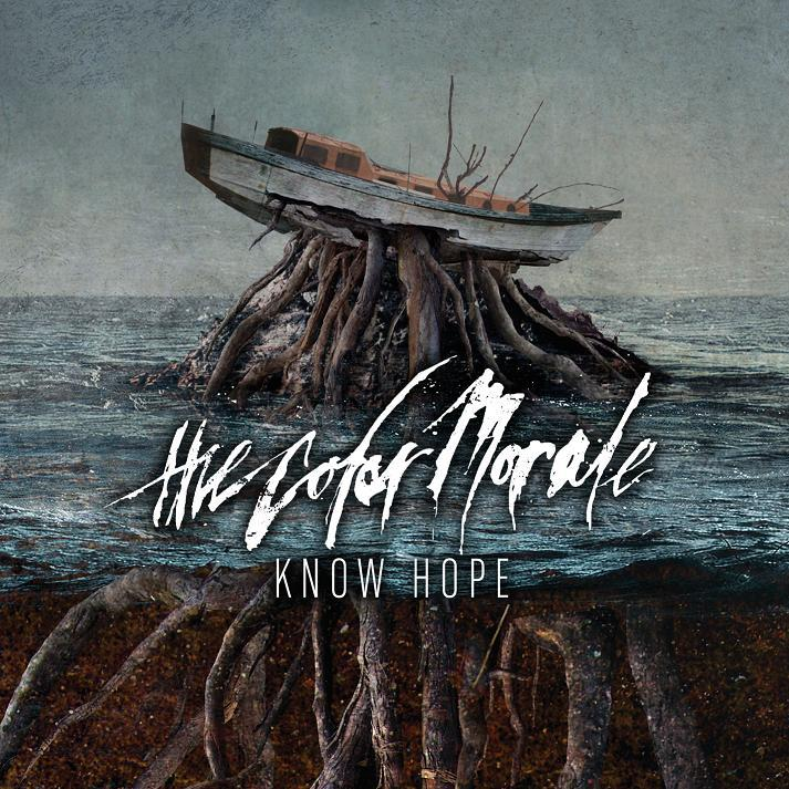 The Color Morale 2013