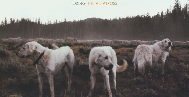 CYLS-068-Foxing-The-Albatross