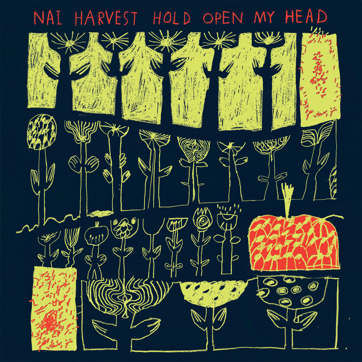 Nai Harvest - 'Hold Open My Head'