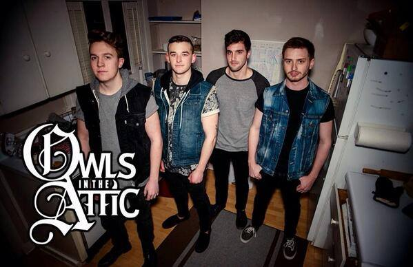 Owls In The Attic