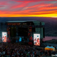 Sasquatch Sunset