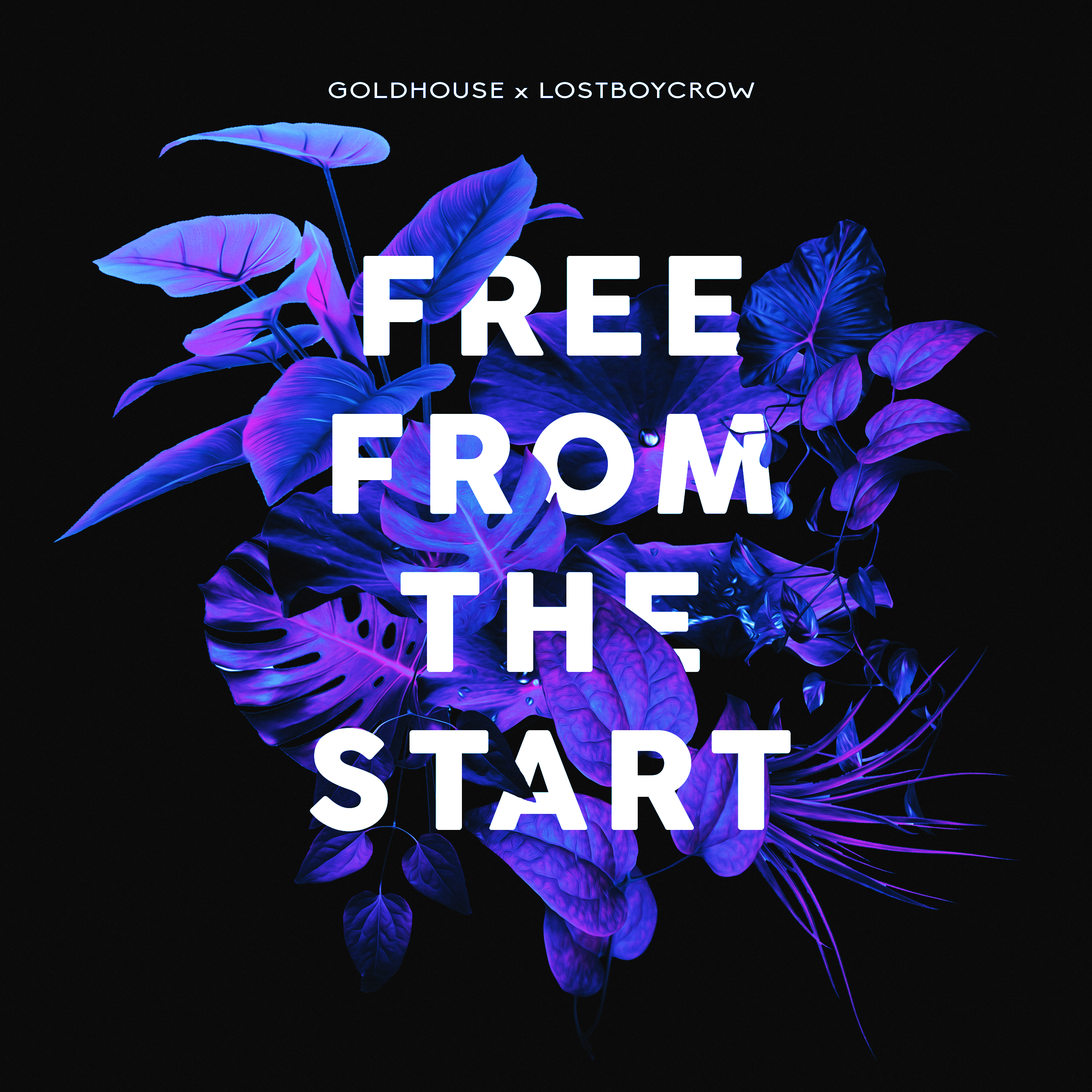 Free From The Start Cover Art